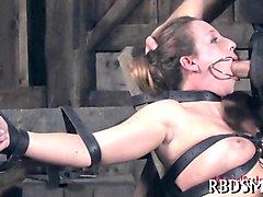 tied up slave bitch swallows her masters pecker