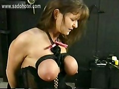 milf gagged and tied up on the chair