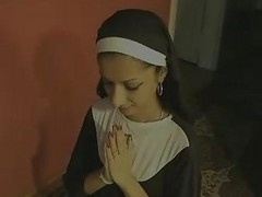 Indian Nun Swallow